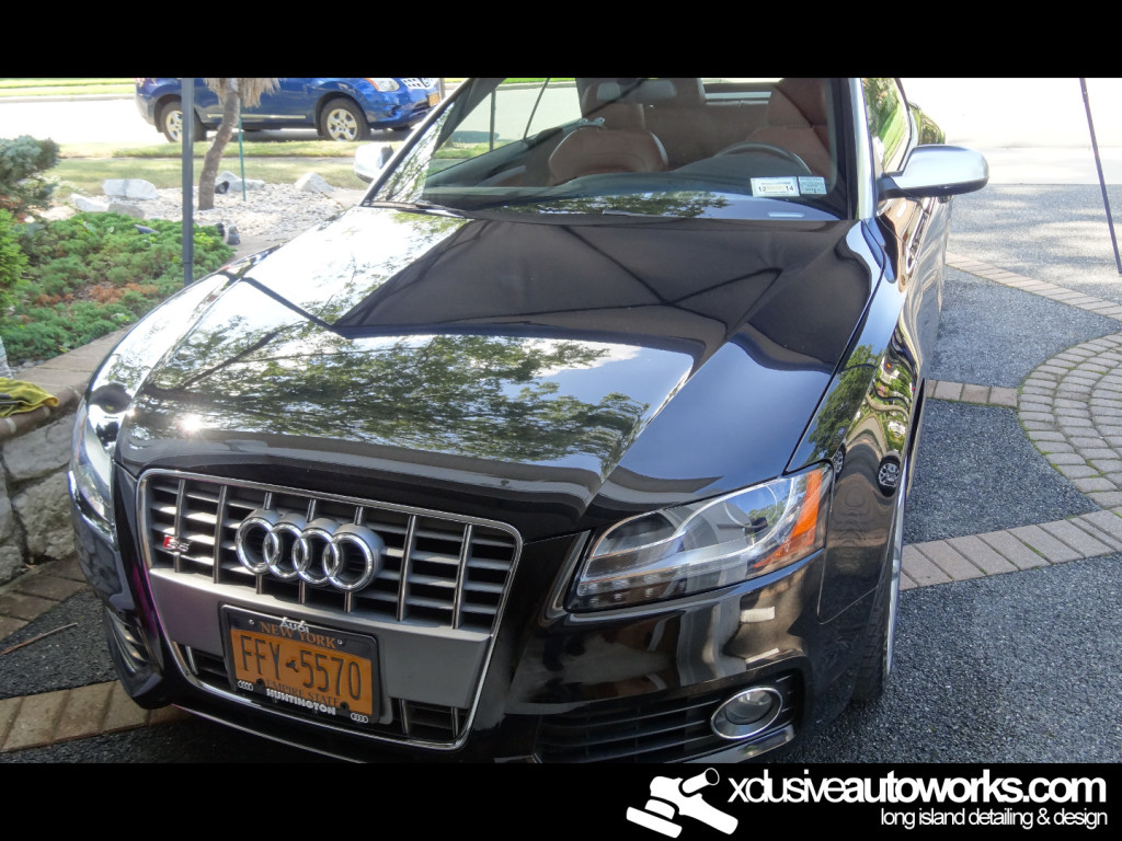 Long Island Paint Correction After